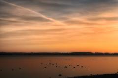 Sleepy Ducks (HDR) (eFRAME.co.uk) Tags: sky clouds sunrise framed framer frame framing hdr photoframe pictureframe photoframes grafham eframe eframecouk 20120207