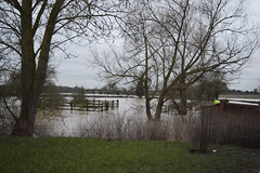 Flooding around Crow Mills - 9/3/16 (lcfcian1) Tags: road trees wet water field river flooding flood south around crow mills floods wetroad sence wigston 9316 floodedroad blaby southwigston crowmills riversence southwigstonflood crowmillssouthwigston crowmillsflood floodingaroundcrowmills9316