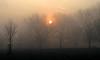 #61 Still (padswift) Tags: sunrise dawn still lewisham brockley londonparks hillyfieldspark hillyfields se4 londonboroughoflewisham lewishamparks parksinlewisham parksinsoutheastlondon sunriseinhillyfieldspark 116in2016