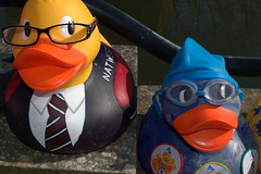 Dressed up ducks for the Ramsbottom Ruck Race 2016 - 5 (Tony Worrall Foto) Tags: county uk england game silly race fun duck costume cool stream tour open place northwest display unitedkingdom many painted country north group ducks competition visit location lancashire plastic area sunlit northern update daft duckrace attraction lancs ramsbottom coolducks welovethenorth