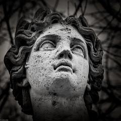 Statue I (s.daboville) Tags: france saintcloud statue iledefrance architecture hautdeseine parcdesaintcloud europe lightroom nb arquitectura bw francia sdaphotographie