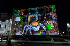 Canberra Enlighten Festival 2016 (ajspaldo) Tags: streetart canon streetphotography 5d canberra act ajs enlightencanberra tonyspalding ajspaldo ajspalto