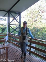 Bird Brain (Clothespin Lady) Tags: costarica lascruces 2016 birdbrain wilsonbotanicalgarden floridaandcostarica2016 birdingcostaricaoffthebeatenpath