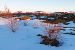 Hverfjall volcano in Myvatn during sunset (Goldsaint) Tags: travel winter light sunset plants mountain snow cold tree tourism ice nature landscape volcano is iceland scenery outdoor north crater summit geography northeast volcanic myvatn goldenhour geological
