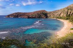 nice bay (Todd Aki) Tags: hawaii hanaumabay