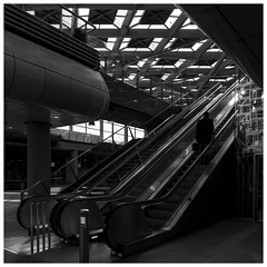 Man, one level up (Harry -[ The Travel ]- Marmot) Tags: blackandwhite bw holland netherlands monochrome dutch station architecture modern stairs square publictransportation zwartwit escalator transport nederland rail railway bahnhof trains denhaag moderne nl centraalstation railyard railways trap hollands centralstation trainyard architectuur spoor emplacement spoorwegen ov treinen openbaarvervoer vierkant 500x500 monochroom sgravenhage schwarzweis hofstad olympusomdem5 allrightsreservedcontactmebyflickrmail