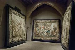 Tapices de las Alegoras de Palas Atenea (aseret_mm) Tags: espaa catedral patrimonio tapiz sigenza tapices visitaguiada catedraldesigenza hispanianostra alegoradeatenea historiadermuloyremo tapicesflamencos
