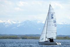 _DSF3913 (Frank Reger) Tags: regatta u20 dsc segeln segelboot diessen