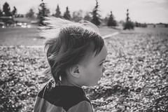 Gone with the wind (kblackfoto) Tags: park boy portrait blackandwhite bw baby canada cute love childhood canon fun outside rebel kid toddler moody child play wind little profile adorable kitlens windy sunny son alberta april t5 playtime chubby sideview oneyearold babyboy harshlight beginnerphotog