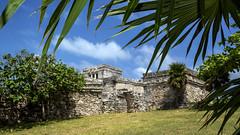Pyramid El Castillo (The Castle) (Mal B) Tags: castle wall port mexico ruins pyramid maya tulum el mayan iguana trade castillo roo costal sites yucatanpeninsula quintana the obsidian qroo nikond600 juandaz 77780tulum precolumbianmayasitezama meaningcityofdawn zamameaningcityofdawn zamacityofdawn tulmyucatanmayanwordforfence wall1ortrench