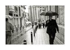 Llueve sobre mojado... (ngel mateo) Tags: blackandwhite espaa blancoynegro water rain gris lluvia andaluca spain agua cloudy gray priest nublado andalusia almera cura catedraldealmera ngelmartnmateo ngelmateo cathedralalmeria