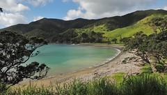 Stony Bay - Coromandel NZ (rmcmilla) Tags: sea wild beach bay stony