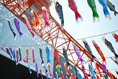 Carp Streamer with Tokyo Tower 5 (wakamsha) Tags: sigma tokyotower dp0q
