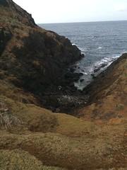 IMG_3524 (elleica) Tags: summer vacation beach islands whitebeach daet camarinesnorte calaguasislands