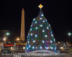 Merry Xmas (Michael Pancier Photography) Tags: xmas usa virginia washingtondc us districtofcolumbia capital nationalparks commercialphotography naturephotographer floridaphotographer michaelpancierphotography landscapephotographer commercialphotographer fineartphotographer michaelapancier wwwmichaelpancierphotographycom