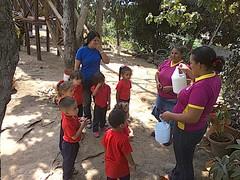 12605369_721463861324259_2217553660038948378_o (dernst) Tags: garden preschool huerta preescolar