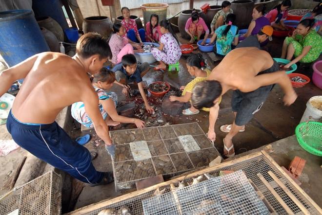 Chợ rắn chuột