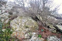 Frontire franco-espagnole en Catalogne, croix frontire 596 sur la crte Est du puig de Taravaus. (Claudia Sc.) Tags: espaa france spain cross border cruz francia espagne frontera croix pyrnes catalogne frontire bordermarker
