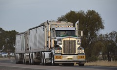 McNaughts (quarterdeck888) Tags: nikon flickr transport frosty semi lorry trucks roadtrain kenworth bigrig overtheroad superhopper haulage quarterdeck class8 heavyvehicle cartage roadtransport heavyhaulage t904 daycab bellydump d7100 highwaytrucks mcnaughts aussietrucks australiantrucks australiantransport timpte squaretanks jerilderietruckphotos jerilderietrucks timptetrailers quarterdeckphotos