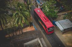 DSC_5739 (GREENBOOK2013) Tags: red bus tree green 35mm coconut outdoor 18 bangladesh 2014 coxsbazar d7000 imnikon tasfiqmahmood