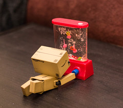 Fish Food (4/52) (abneysc) Tags: fish playing toy toys games weeks 52 danbo 52weeks danboard