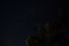 National Zoo and Aquarium night sky (End Vision) Tags: trees nature night stars photography zoo josh vision nighttime astrophotography end canberra starlight sellick