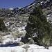 Sandia Snow 3