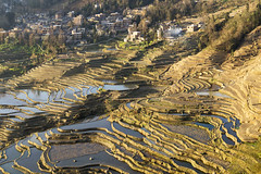 Duoyishu - Yuanyang - Yunnan - China (wietsej) Tags: china zeiss landscape rice sony terraces yunnan 1670 yuanyang a3000 duoyishu sel1670z