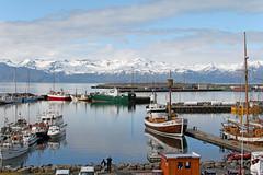 Port de Husavik - 2 - Iceland (Xtian du Gard) Tags: port husavik iceland baleine bateau boat panorama landscape waterscape whale reflection reflexion reflet impressive xtiandugard