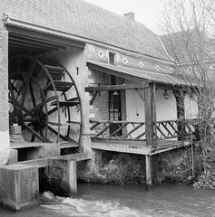 Superpan200_Meerhout-4 (Jensdh) Tags: film:iso=200 ilfordilfotecddx rolleisuperpan200 developer:brand=ilford developer:name=ilfordilfotecddx film:brand=rollei film:name=rolleisuperpan200 filmdev:recipe=10677