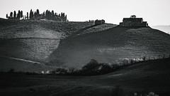 160319163456 - Foto Francesco Ghignoni (Francesco Ghignoni) Tags: wedding portrait panorama photo photographer event crete siena fotografia francesco fotografo arezzo asciano professionista sangiovannidasso arbia trequanda senesi montisi ghignoni francescoghignoni wwwfrancescoghignoniit