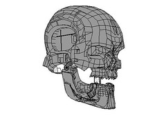 Life Size Terminator T-600 Head for Cosplay Free Papercraft Download (PapercraftSquare) Tags: cosplay head helmet terminator lifesize t600 600series seriest600 t600model