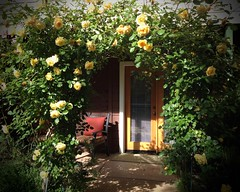 A Night in the Country (mystuart) Tags: ca door roses sun yellow garden chair dusk cottage entrance arbor santarosa storybook bnb