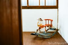 18 () Tags: food film zeiss 50mm fuji pentax jena mc 400 carl m42 ddr fujifilm f18 spf  50mmf18 fujicolor  filmphotography   czj      pancolar       czjpancolar50mmf18      wearpractice  carlzeissjenaddrpancolar50mmf18mc fujicolor 18 bloom  beautifulaffairbylyx