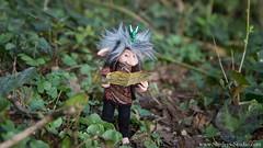 Ross (Shirleys Studio | Handmade Art Dolls) Tags: shirleysstudio shirleys studio beeldende kunst art artist grotto troll ooak dolls trollen trolletjes boswezens fantasy doll artdoll trol trolls figurine handmade