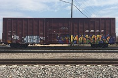 Mayor (Psychedelic Wardad) Tags: graffiti mayor mayo d30 freight kwt dirty30 fbb benching