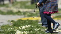 Petals (Dave-Mcclean 67) Tags: flowers portugal girl festival petals hands shoes