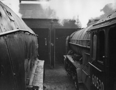 Cabbing A4 60034 Lord Faringdon, and A2 60530 Sayajirao, Dundee Tay Bridge shed, 62B (rac819) Tags: steam railways britishrailways steamlocomotives uksteam brsteam
