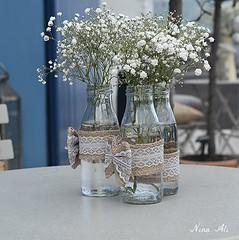 Spring flowers (Nina_Ali) Tags: tabledecorations springflowers cornwall spring england 2016 ninaali