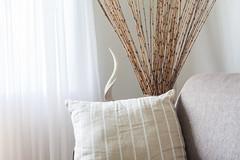 _MG_1537 (TonivS) Tags: comfortable interior lounge minimal pillows clean sofa minimalistic airbnb airbnbrooms