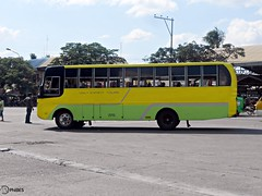 Holy Infant Tours (Monkey D. Luffy 2) Tags: road city bus public photography photo coach nikon philippines transport vehicles transportation coolpix vehicle enthusiast society davao coaches philippine isuzu enthusiasts tagum philbes