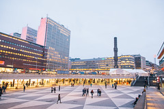 IMG_8674 (Adventurin') Tags: dog sweden stockholm aurora lapland sledding kiruna nothernlights
