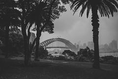 17/52 (Bohemia Heart) Tags: blackandwhite white mist black rain 35mm cityscape sydney bnw sydneyharbour sydneyharbourbridge digitalfilm 52weeks