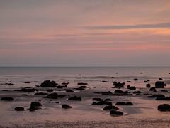 Bognor NovemberPB165934_27 (tony.rummery) Tags: sunset england seascape beach reflections sussex rocks unitedkingdom olympus gb southcoast groyne bognor englishchannel bognorregis breakwater mft microfourthirds epm1