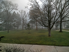 Hope College - Foggy Morning (Leo Herzog) Tags: holland college weather fog mi project hope day foggy hopecollege hollandmi projectweather