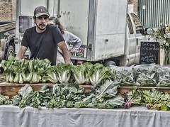 veggies (peter.clark) Tags: vegetables farmers market bokchoy covington