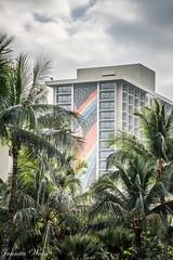 160115_04439 (Juanita Marks Wood) Tags: hawaii honolulu hiltonhawaiianvillage rainbowtower