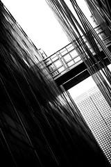 IMA (Jeff Heurteur) Tags: bridge windows blackandwhite bw white black paris france building monochrome architecture canon blackwhite noir noiretblanc du nb arabe monde blanc institut noirblanc linescurves monochromy monochromie