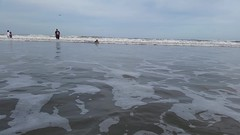 Violet Boogie Boarding On Mickler's Beach (Joe Shlabotnik) Tags: cameraphone ocean beach video florida violet pontevedra boogieboard 2015 micklersbeach justviolet galaxys5 december2015
