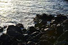 rocks and sea @ sunset (heartinhawaii) Tags: ocean sunset sea nature hawaii coast seaside rocks pacific shoreline maui shore sunsetlight 808 lavarocks rockyshore southmaui rocksandsea nikond3300 ahihinaturereserve